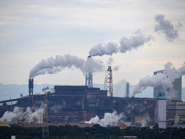 Princípio do Decrescimento no Direito Ambiental.